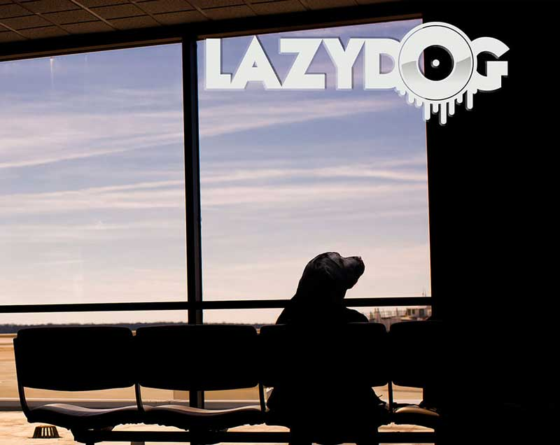 portada disco Lazy Dog